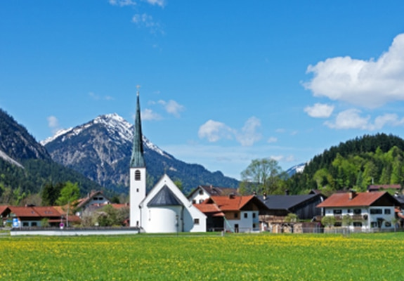 Lyme Disease and Cancer Treatment in Germany